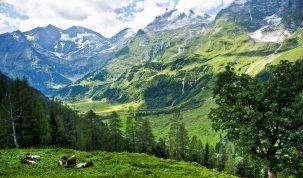 Alpe Austrija