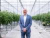 Najveći domaći proizvođač mini rajčica Zarja grupa očekuje 3 milijuna kuna dobiti